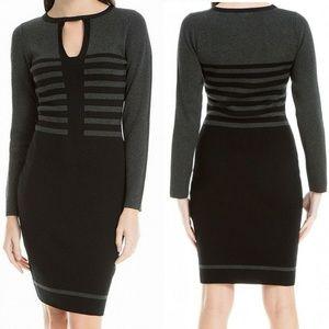 NWT Max Studio Gray & Black Sweater Dress, L